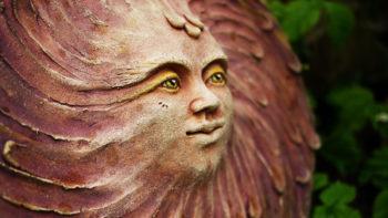 Sluneční žena lucie polanská mrazuvzdornost nikilu 3