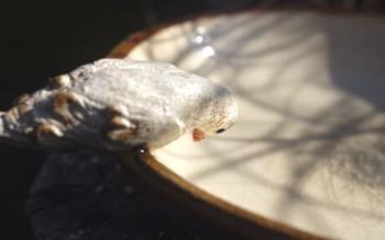 detail ptáčka - keramika