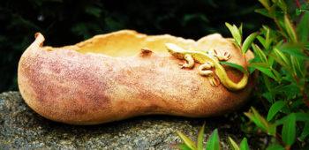 keramický květináč bonsaj ještěrka fazole mrazuvzdor lucie polanská nikilu 2