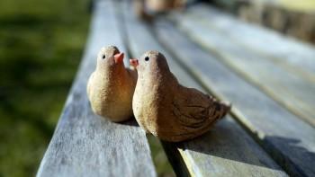 Ručně modelované keramické figurky ptáčků - keramika Polanská