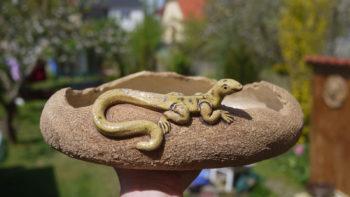 keramický květník s ještěrkou