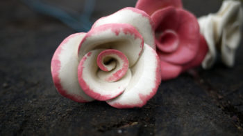 keramická růže lucie polanská růžová žíhaná x 1