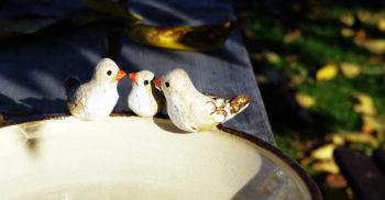 keramika pítko pro ptáky rodina lucie Polanská nikilu 2