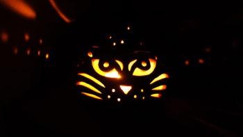 keramická lampa na svíčku, dýně kočka lucie polanská2