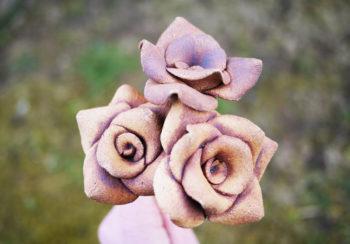 ruže velká šamot železo mrazuvzdor lucie polanska5