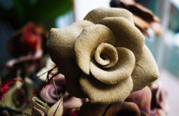ruže velká šamot přírodní mrazuvzdor lucie polanska